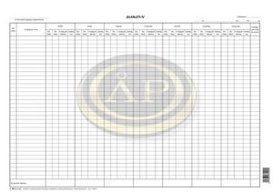 Jelenléti ív 2x36 fő nyilvántartására 420x295 mm, C.60-2