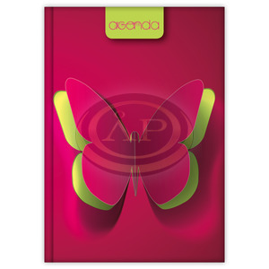 Dayliner agenda Colors A5 napi Butterfly